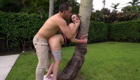 Красивый секс у дерева
